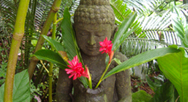 The Amitābha Buddha, often called The Buddha of Infinite Light.